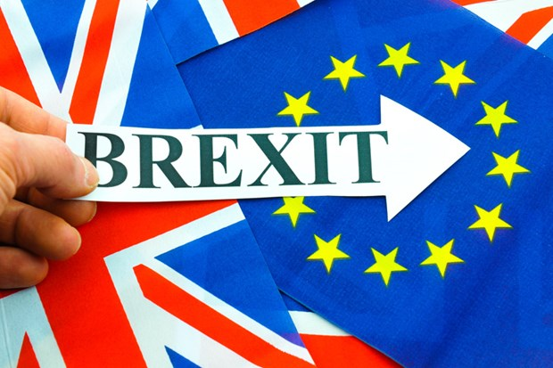 Vietnam experts mull impacts of Brexit hinh anh 1