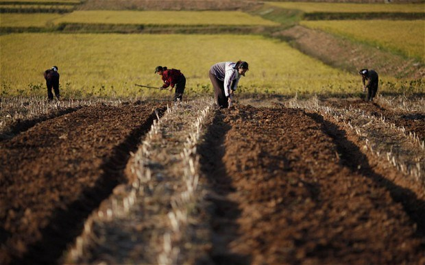 DPRK shifts towards improving people living standards hinh anh 1