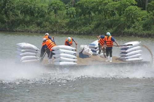 Tra fish exports to China thriving hinh anh 1