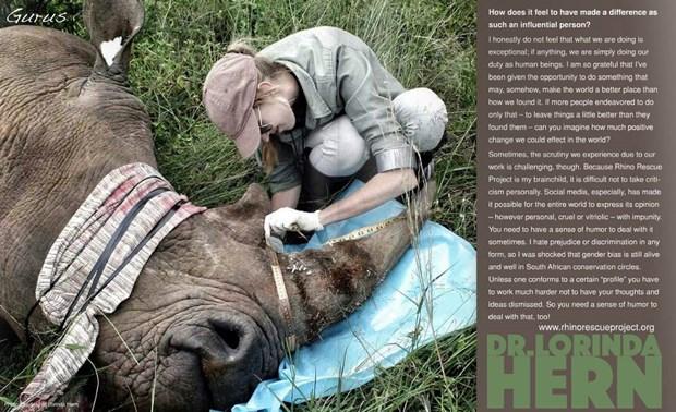 Advertising agency wins creativity awards for rhino saving ad hinh anh 1