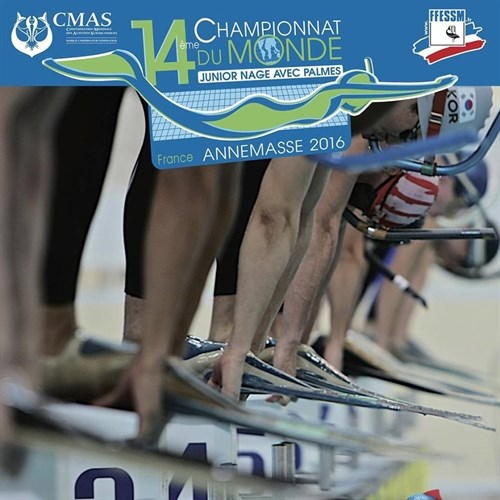 Finswimmers test skills in France hinh anh 1
