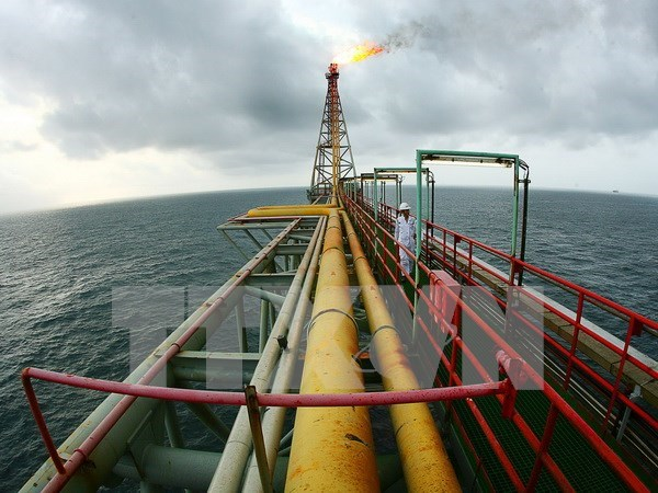 PetroVietnam to boost crude oil production with additional drilling hinh anh 1
