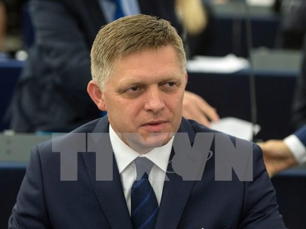 Slovakia's Prime Minister begins Vietnam visit hinh anh 1