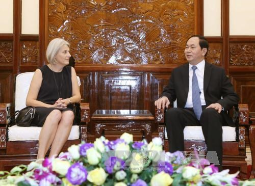 Vietnam gives importance to relationship with Denmark: President hinh anh 1