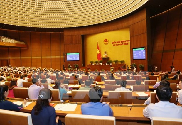 Imperative issues should be under parliament's supervision: deputies hinh anh 1