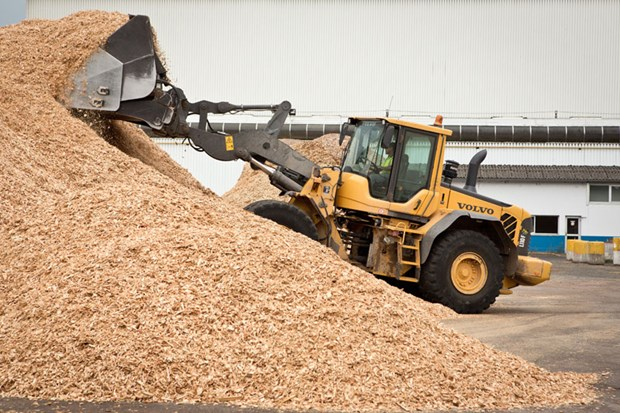 Largest woodchip processing factory in Phu Yen starts operation hinh anh 1