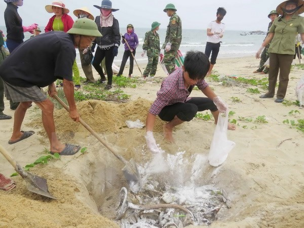 Rice aid comes to affected fishermen in Quang Tri hinh anh 1