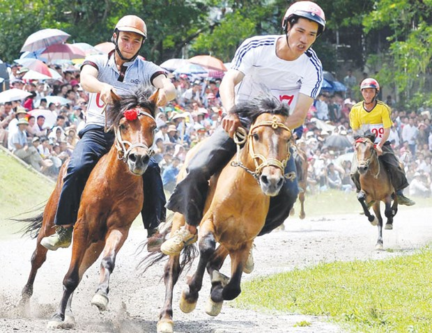 Vietnam fine-tunes rules on horse racing, int'l football betting hinh anh 1