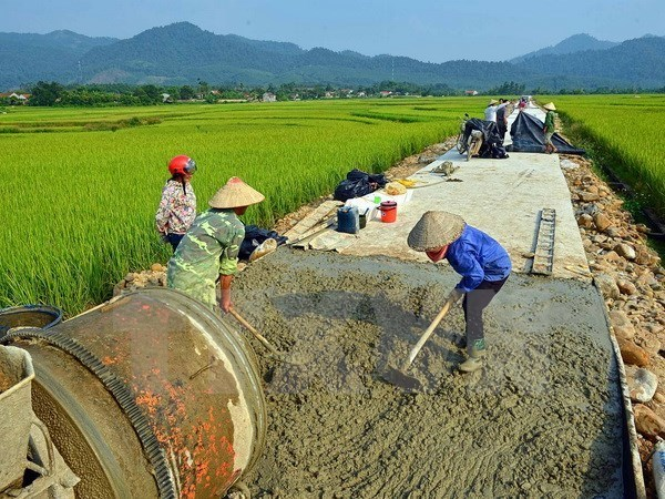 Kien Giang develops rural transport infrastructure hinh anh 1