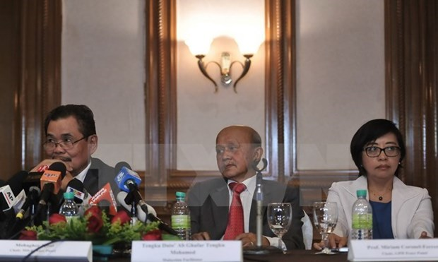 Philippine gov't resumes peace talks with MILF group hinh anh 1