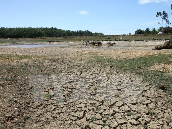 Financial incentives proposed for devastated farmers hinh anh 1