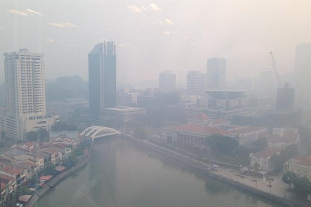 Singapore blanketed in haze hinh anh 1