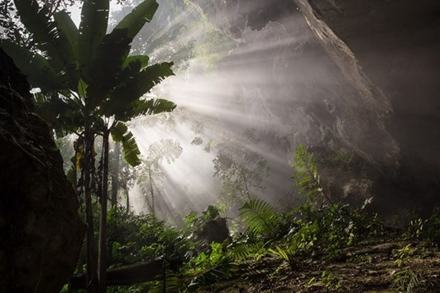 360 tourists book adventure tour of Son Doong Cave hinh anh 1