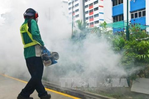 Singapore discovers more cases of Zika virus hinh anh 1
