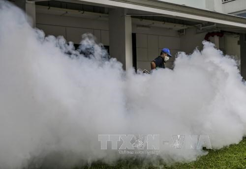 Zika virus in Singapore likely evolved from Southeast Asia hinh anh 1