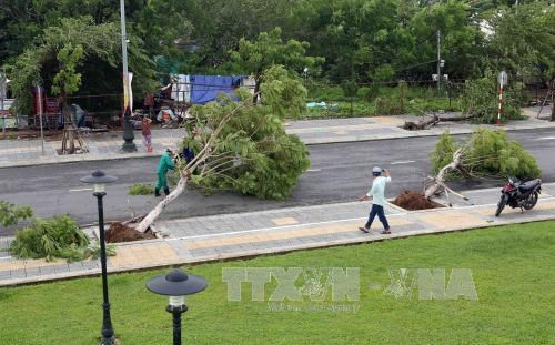 Central localities urged to overcome storm consequences hinh anh 1