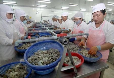 Brackish water shrimp farming under spotlight hinh anh 1