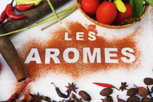 World-renown chefs to come to Hanoi for Les Aromes Festival hinh anh 1