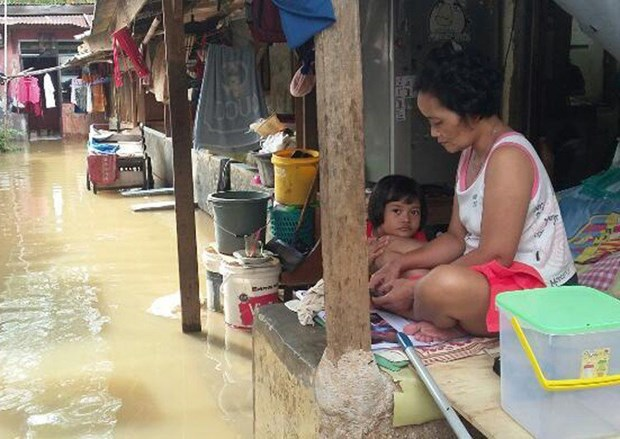 Death toll from torrential rain in Indonesia rises hinh anh 1