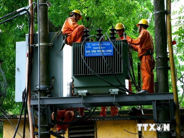 Project to provide electricity for Ca Mau hinh anh 1