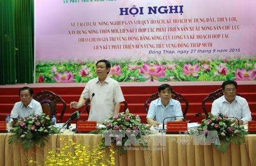 Mekong Delta: Agricultural restructuring needs to follow planning hinh anh 1