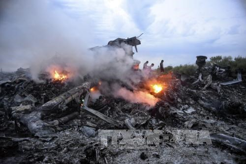 Malaysian lawyers propose bringing MH17 case to ICC hinh anh 1