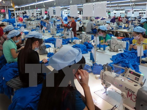 EU-VN Partnership and Cooperation Agreement takes effect hinh anh 1