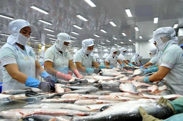 Fish exporters face difficulties in hitting year-end goal hinh anh 1