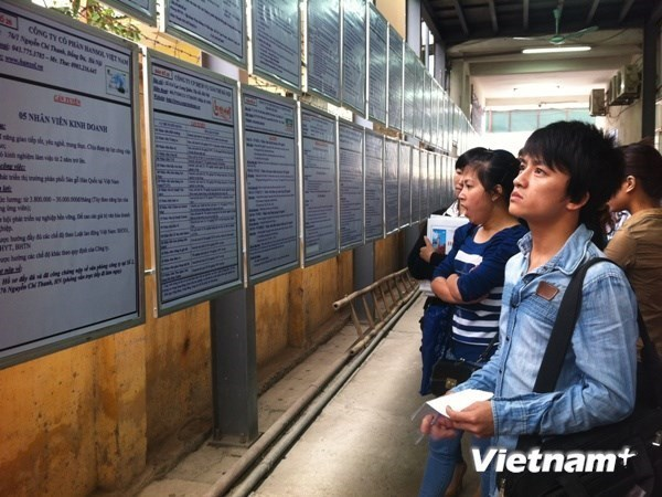 Vietnam to carry out labour force survey in 2017 hinh anh 1