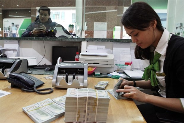 HCM City overseas remittance on the rise hinh anh 1