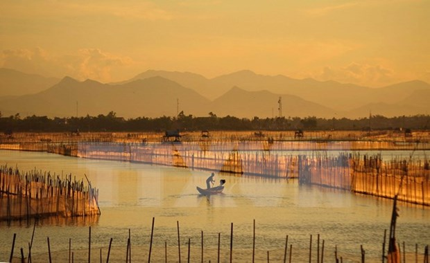 Thua Thien – Hue conserves submerged lands hinh anh 1