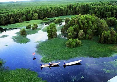 U Minh Thuong National Park expected to become friendly destination hinh anh 1