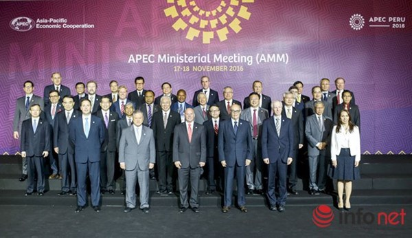 Vietnam ready for APEC events in 2017 hinh anh 1