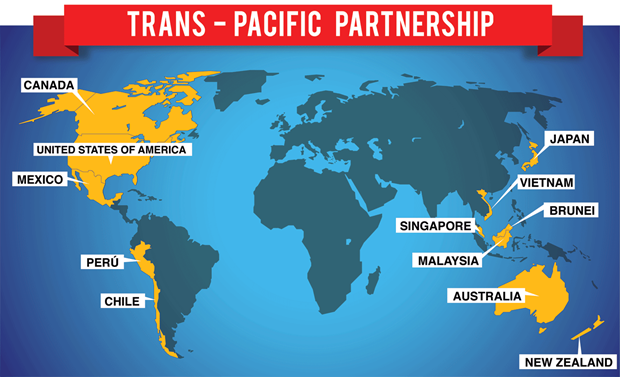 TPP leaders promise efforts to implement deal hinh anh 1