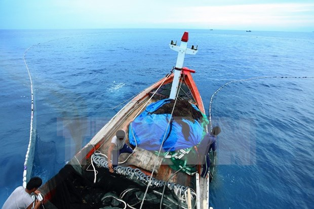 Fisheries trade union objects to China's attacks on Vietnamese ships hinh anh 1