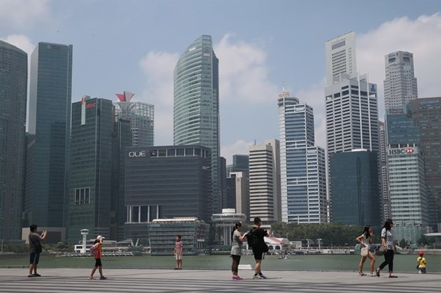 Singapore: PMI grows at slowest pace since late 2012 hinh anh 1