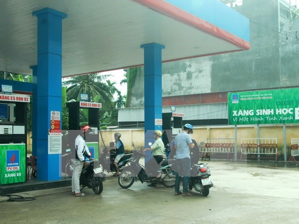 Decision to ensure high quality bio-fuel supplies hinh anh 1
