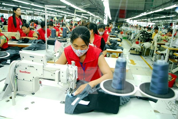 Thua Thien-Hue to boost textile-garment development hinh anh 1