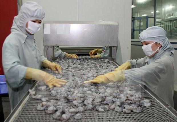 Vietnam's shrimp exports to prosper hinh anh 1