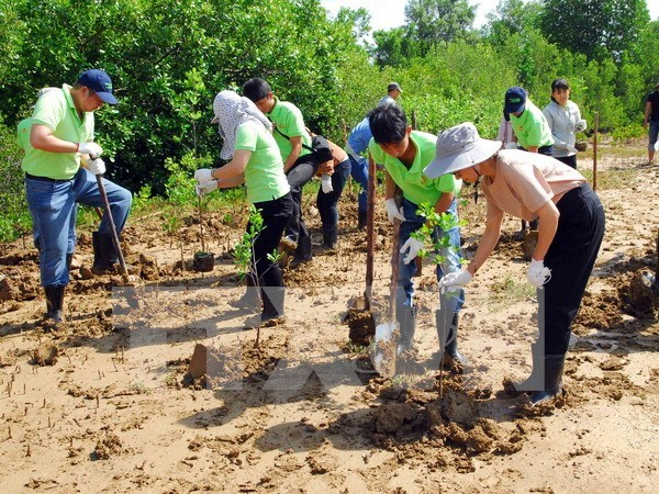 Vietnam, EU share expertise in coping with climate change hinh anh 1