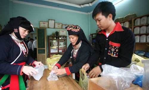 Hanoi's efforts to reduce poverty in ethnic communes pay off hinh anh 1