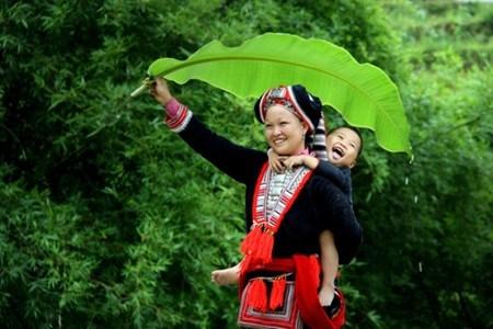 Vietnam contest shows photo, video skills hinh anh 1