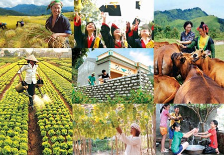 Vietnam's MDG implementation over 15 years reviewed hinh anh 1