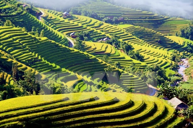 Cultural event spotlights Ha Giang's terraced paddy fields hinh anh 1