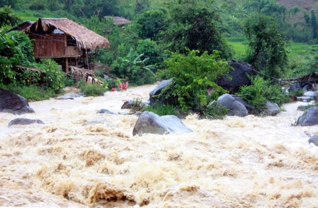 Floods kill four in Nghe An province hinh anh 1