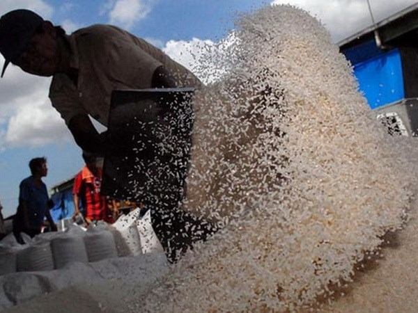 Indonesia forecasts possible rice shortages next year hinh anh 1
