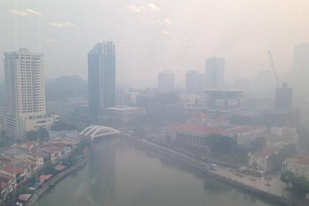 Singapore closes schools as haze conditions worsen hinh anh 1