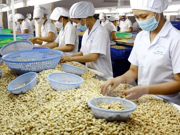 Agricultural production urged to keep up with market demand hinh anh 1