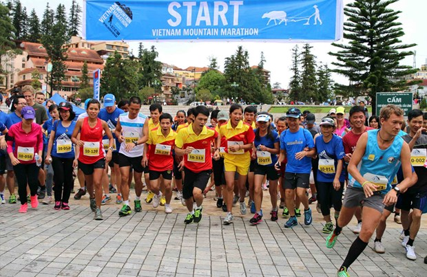Mountain marathon proceeds go to good cause hinh anh 1
