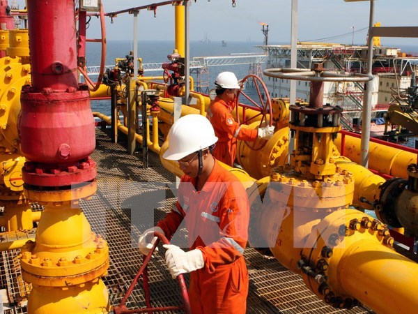 Gas distribution system inaugurated in Thai Binh province hinh anh 1